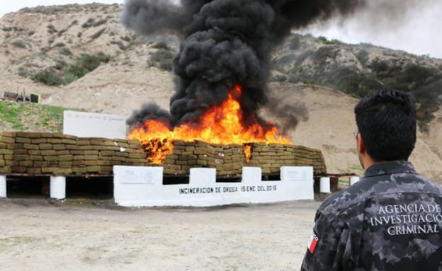 פשע עולמי (צילום: MEXICO ATTORNEY GENERAL)