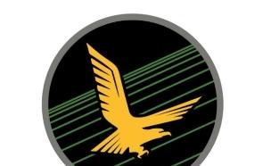 סמל האדיר (צילום: אתר חיל האוויר)