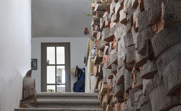אורית חביב, גזעים על קיר (צילום: הגר דופלט)