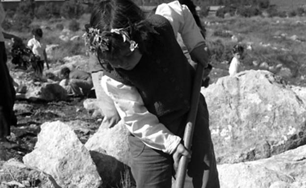 """קיבוץ נחשון, ט""""ו בשבט 1963 (צילום: מתוך אוסף התמונות מארכיון קיבוץ נחשון)"""
