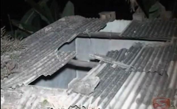 פרה מהגג (צילום: SUPER CANAL TV)