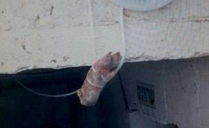 רגל חזיר בכניסה לבית הכנסת (צילום: חטיבת דובר המשטרה)