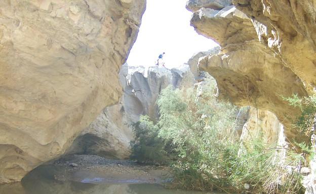 עין ירקעם  (צילום: רומי ישראלי. מתוך אתר פיקיוויקי)