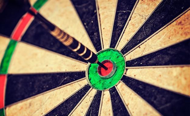 לוח מטרה (אילוסטרציה: Shutterstock)