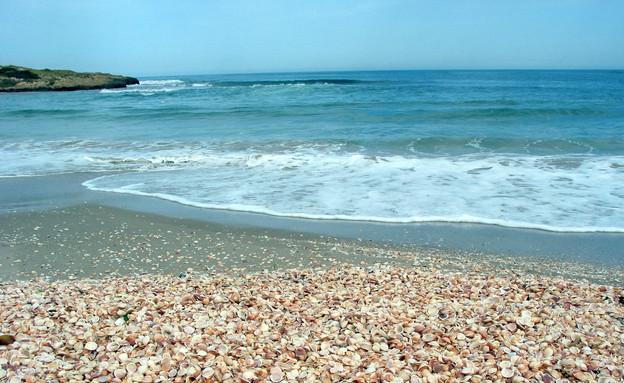 חוף הבונים (צילום: רשות הטבע והגנים, יחסי ציבור)