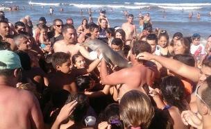 צילום סלפי עם דולפין הביא למותו (צילום: Hernan Coria via Facebook)