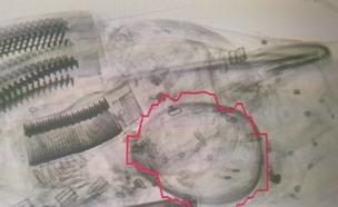 הממצאים בעמדת השיקוף, הבוקר (צילום: רשות שדות התעופה)