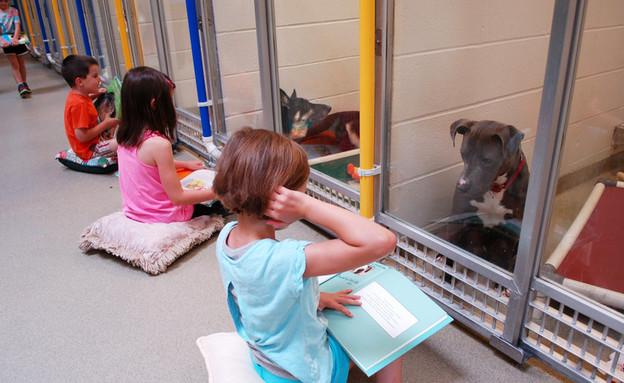 ילד מקריא סיפור לכלב    (צילום: hsmo.org)