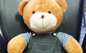 דובי עם מצלמה נסתרת (צילום: חנות ציוד ובילוש ספיי סטור)