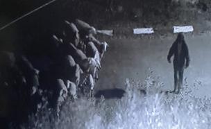 תיעוד: לכידת גנבי הבקר - כמו מבצע צבאי (צילום: חדשות 2)
