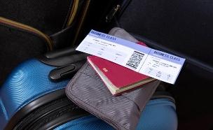 כרטיס טיסה (צילום: conejota, Shutterstock)