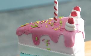 עוגת יום הולדת עם הפתעת סוכריות (צילום: דניאל בר און, בייק אוף ישראל)