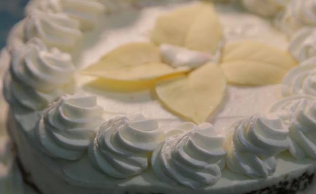 עוגת גבינה אדום אדום (צילום: דניאל בראון, בייק אוף ישראל)