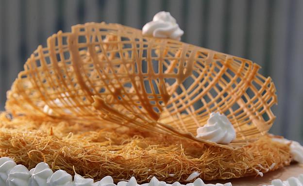 עוגת גבינה עם דבש ופרלין (צילום: דניאל בראון, בייק אוף ישראל)