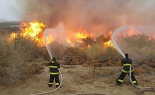 השריפה סמוך לנאות הכיכר (צילום: יאיר וקנין)