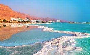 עין בוקק, ים המלח (צילום: vvvita, Shutterstock)