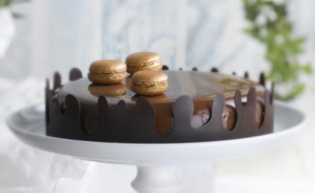 עוגת גולד שוקולד כשרה לפסח  (צילום: רונן מנגן, אוכל טוב)