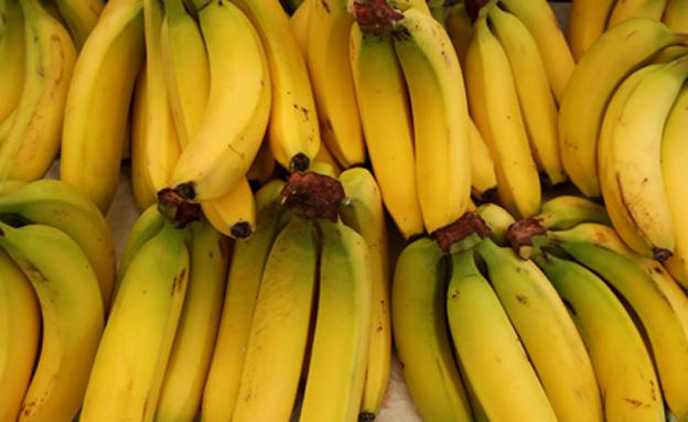 פרי בסכנת הכחדה? ארכיון (צילום: רויטרס)