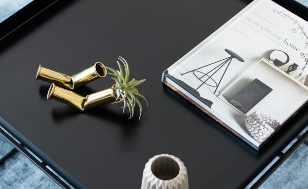 ליבנת כהן מרין, שולחן סלון (צילום: גדעון לוין)