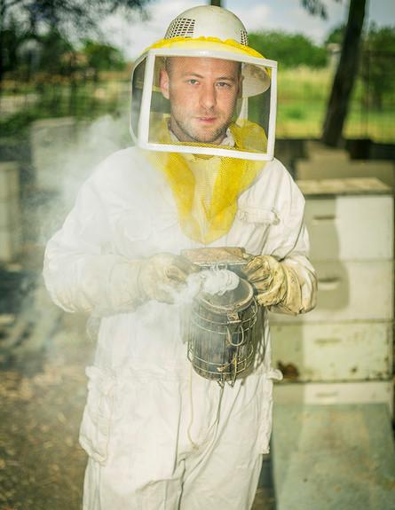 עודד כרמלי מתמודד עם דבורים (צילום: עופר חן)