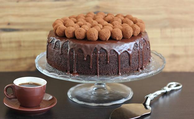 עוגות שוקולד, קוקוס וטראפלס (צילום: ענבל לביא, אוכל טוב)