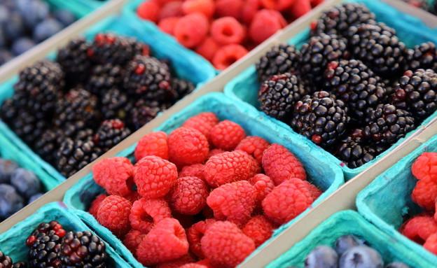 פירות יער (צילום: Verity Snaps Photography, Shutterstock)