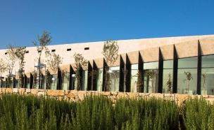 מוזיאון פלסטיני לאמנות (צילום: Bassam Al Mohor, אינסטגרם/צילום מסך)