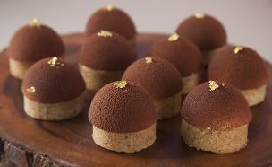 טארטלט פקאן, שוקולד וגבינה (צילום: אפיק גבאי, בייק אוף ישראל)