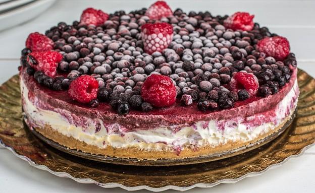 עוגת גבינה טבעונית (צילום: אלונה להב, אוכל טוב)