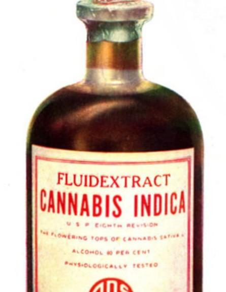 מיצוי נוזלי של קנאביס רפואי משנת 1937 (צילום: wikimedia user: Anna Frodesiak)
