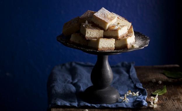 עוגת גבינה לימונצ'לו (צילום: דניאל לילה, אוכל טוב)