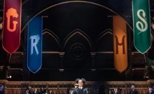 הארי פוטר והילד המקולל