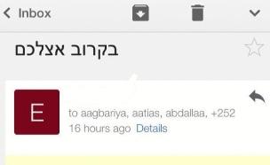 """המייל שנשלח לח""""כים"""