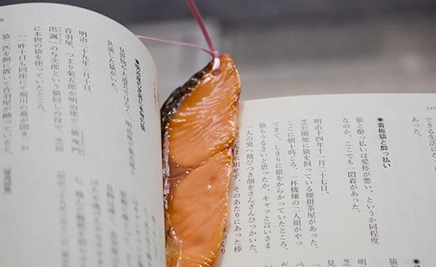 שבוע הספר 0111, סימנייה ריאליסטית במיוחד (צילום: tokyokitsch.com)