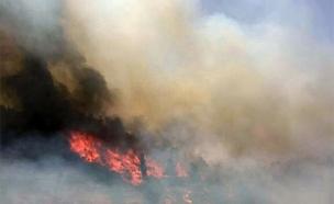 שריפה בכניסה לירושלים (צילום: חדשות 2)