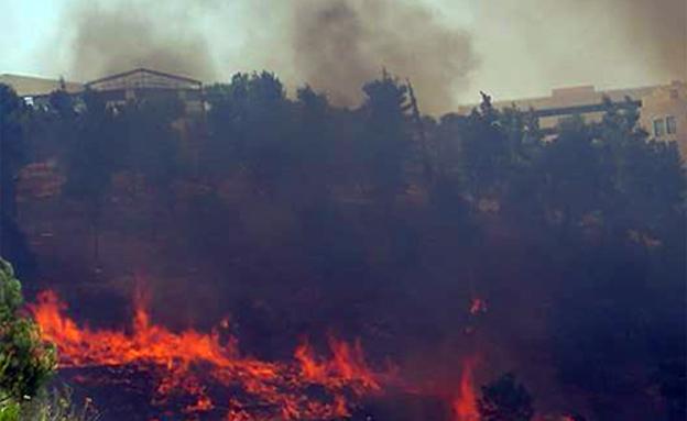 שריפה בכניסה לירושלים (צילום: גל אביטבול)