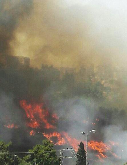 שריפה בירושלים (צילום: דוברות כבאות והצלה ירושלים)