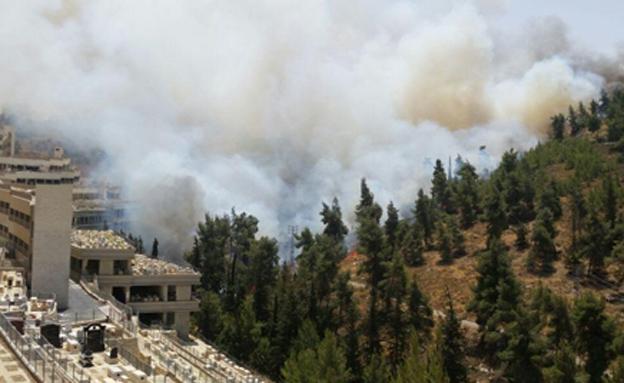 """מטוסי כיבוי הוקפצו לשריפה (צילום: אבי טרוזמן ויהודה שלזינגר - סוכנות הידיעות """"חדשות)"""