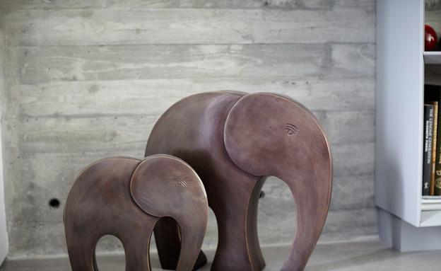 פילים (צילום: ליאור אביטן)