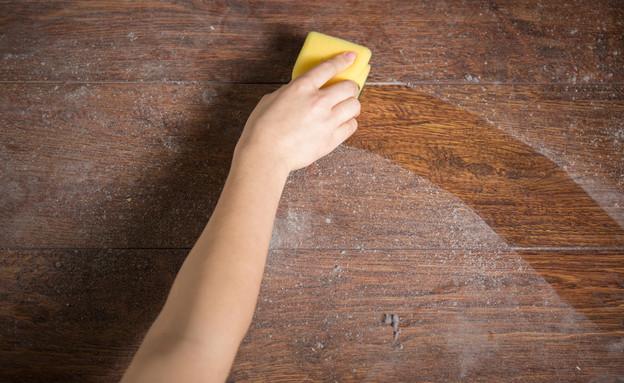 לנקות אבק (צילום: Photographee.eu, Shutterstock)