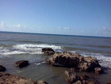 סחף וזיהום מהנחל מגיעים לים