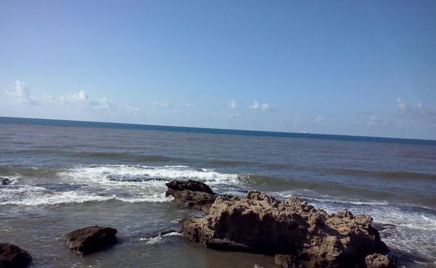 סחף וזיהום מהנחל מגיעים לים (צילום: RECO)