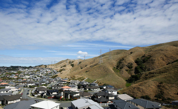 בתים בפרבר של וולינגטון, ניו זילנד (צילום: Hagen Hopkins, GettyImages IL)