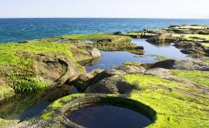 בריכת 8 בסידני, אוסטרליה (צילום: RugliG, Shutterstock)