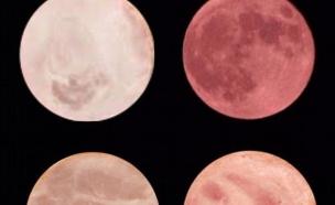 ירח או נקניק (צילום: מעריב לנוער)