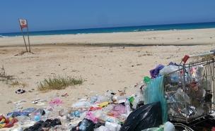 צפו: חוף מזוהם (צילום: גליה פסטרנק)