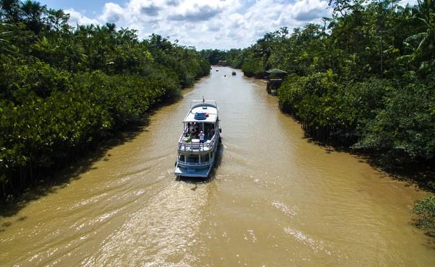נהר האמזונס (צילום: Filipe Frazao, Shutterstock)