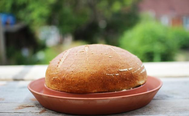 אופה לחם (צילום: קיקסטארטר)