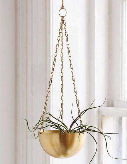 עציץ תלוי, מחיר-62 שקל (צילום:  urbanoutfitters.com)