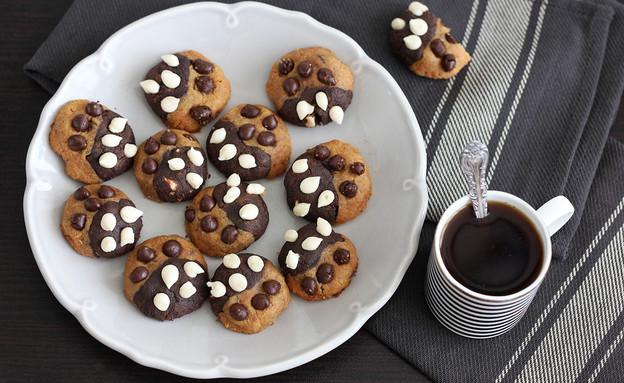 עוגיות חמאת בוטנים ושוקולד (צילום: ענבל לביא, אוכל טוב)